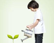 浇水的小男孩PSD素材