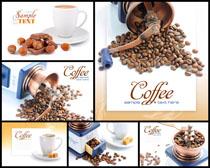 咖啡果子摄影模板高清图片