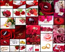 花朵與情侶戒高清圖片