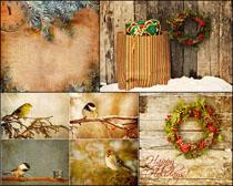 圣诞装饰鸟类背景高清图片