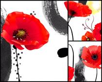 水墨与花朵无框画高清图片