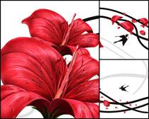 高清花朵无框画素材