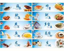 海鲜海产品画册设计矢量素材