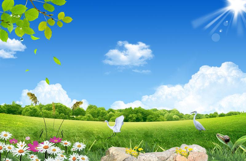生态自然风景psd素材