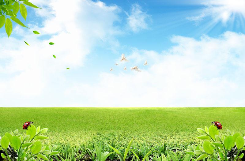 关键字: 蓝天草地自然景观草地风景草原景色蓝天白云春天景色春季