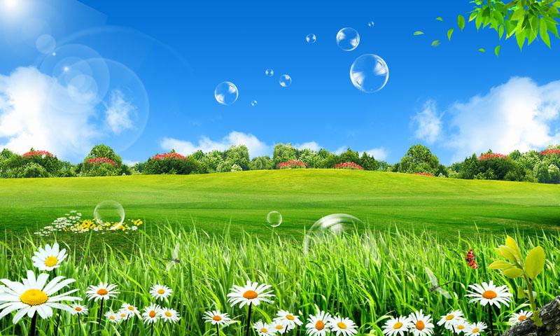 绿色草地壁纸3d绿色护眼桌面壁纸 壁纸绿色 风景 山水图片