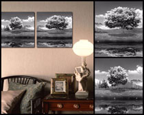 黑白樹景色壁畫高清圖片