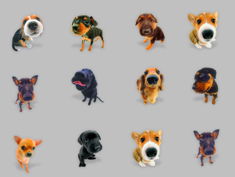 图标素材 卡通图标 > 素材信息   关键字: dog宠物狗狗狗可爱卖萌吉