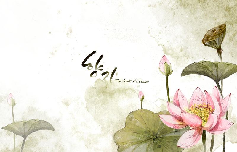 彩色小花朵韩国psd素材 紫色手绘花朵摄影psd素材 向日葵封面设计psd图片