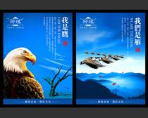 鹰雁团队企业文化宣传展板设计PSD素材