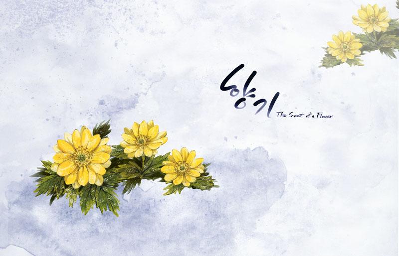 马蹄莲手绘花朵封面psd素材