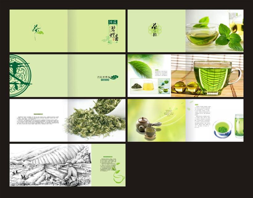 清爽茶叶画册设计矢量素材图片