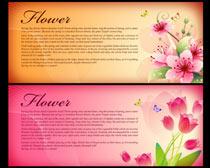 唯美花卉展板背景设计PSD素材