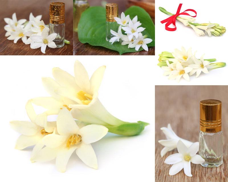 花朵香水摄影高清图片