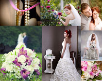 婚纱女人与花朵高清图片