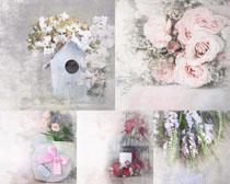 花朵與禮物繪畫攝影高清圖片