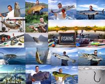 国外海鱼摄影时时彩娱乐网站