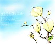 水墨花朵背景封面PSD素材