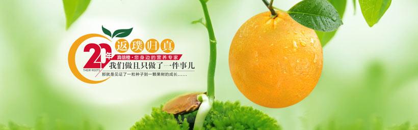 淘宝水果促销海报设计psd素材