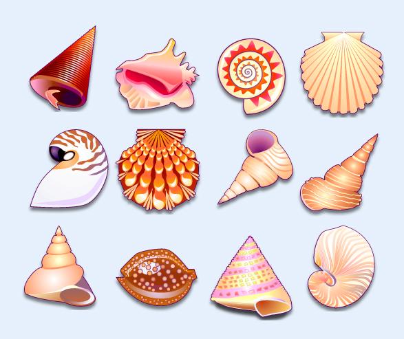 爱图首页 图标素材 卡通图标 小贝壳 贝壳 海滩 贝壳 系统图标 png