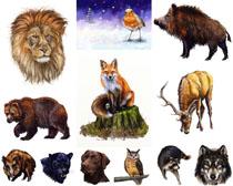 动物画图片