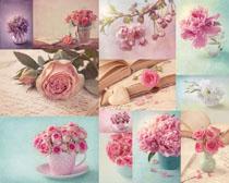 粉色玫瑰花朵與花瓶高清圖片