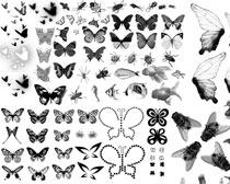 动物昆虫笔刷PS素材