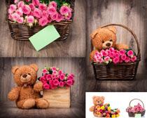 篮子花朵与小熊摄影高清图片
