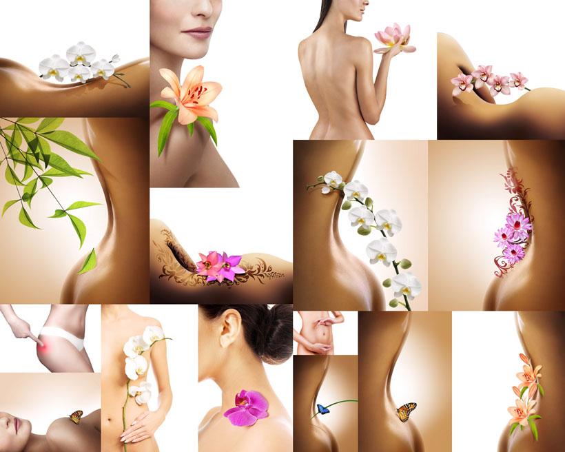 女性美体SPA与花朵摄影高清图片 爱图网设计