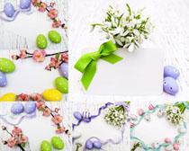 彩蛋与花朵摄影高清图片