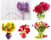 花瓶花朵裝扮攝影高清圖片