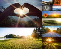 阳光下的田园风景摄影高清图片