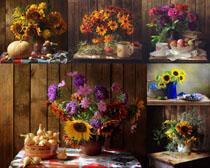 靜態寫真花朵攝影高清圖片