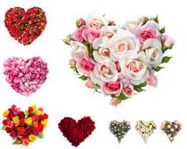 愛心玫瑰花朵攝影高清圖片