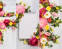 花朵與本本拍攝攝影高清圖片
