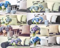 家居沙發與花朵攝影高清圖片