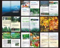 旅游宣传册设计矢量素材