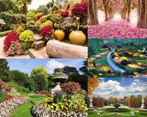 美麗的花園景觀攝影高清圖片