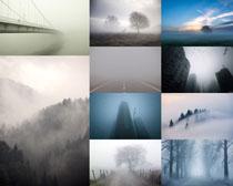 大雾天气摄影高清图片