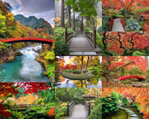 美丽的秋天景点摄影高清图片