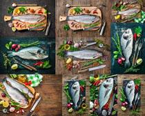 海鱼原料制作摄影高清图片