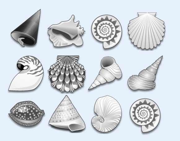 爱图首页 图标素材 卡通图标 小贝壳 贝壳 海滩 黑白 系统设置 系统