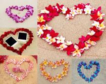 愛心形狀花朵攝影高清圖片