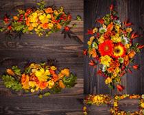 木板上的花朵攝影高清圖片