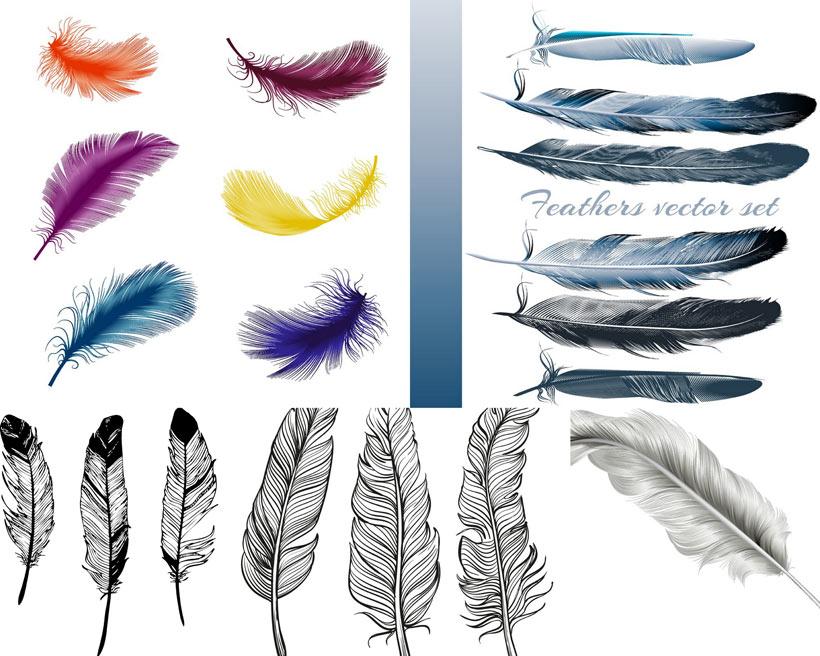 羽毛设计矢量素材 - 爱图网设计图片素材下载