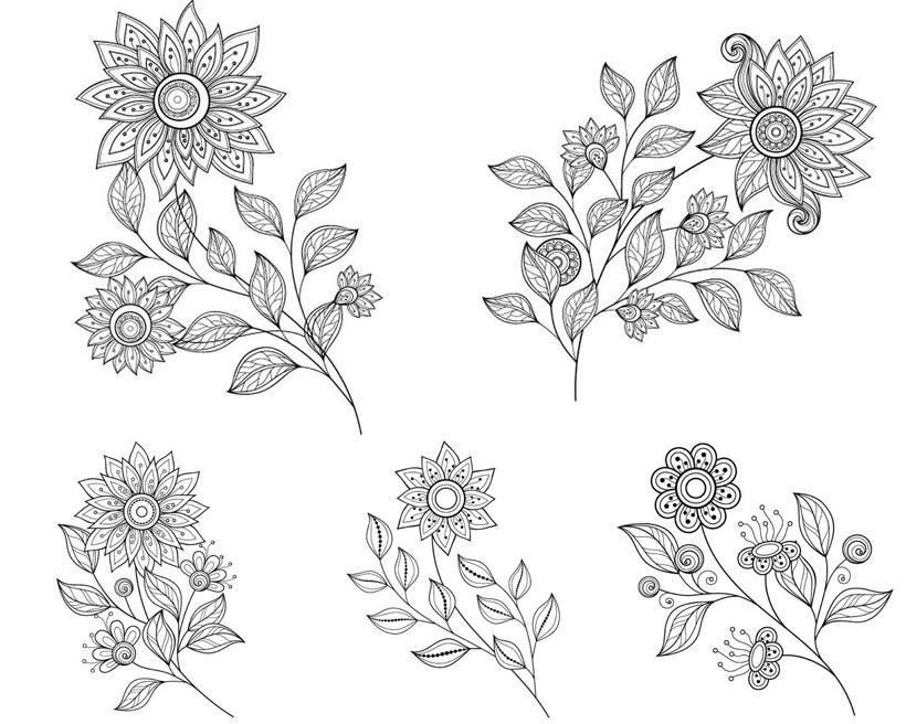 手绘花卉植物矢量素材