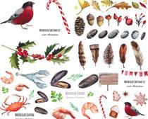 虾和螃蟹水彩画矢量素材