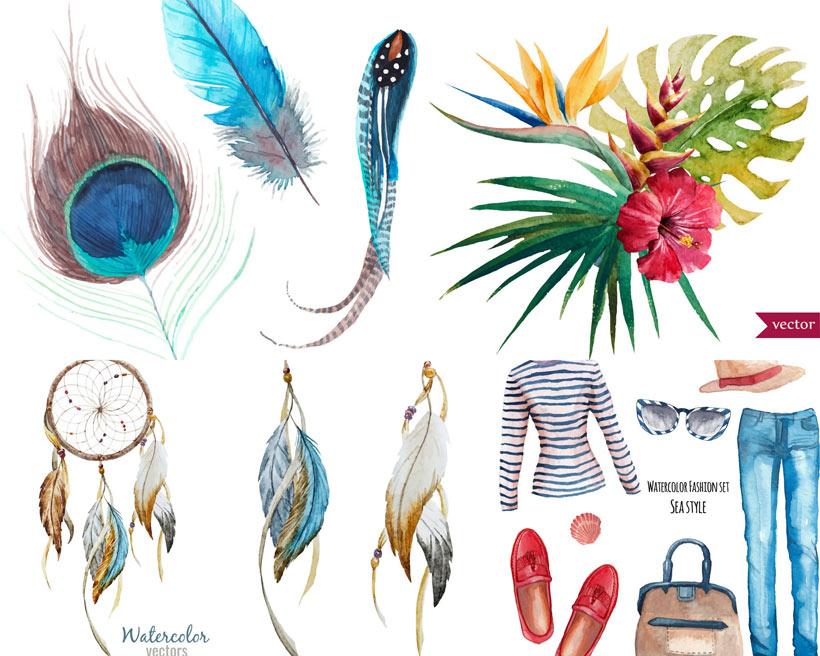 鸟类水彩羽毛矢量素材
