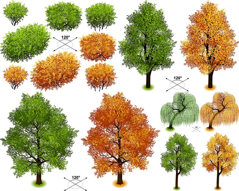 秋天的是树叶矢量素材