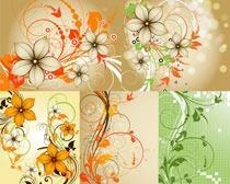 花纹光斑创意设计矢量素材
